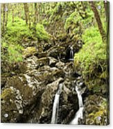 Waterfall Through Woodland Acrylic Print