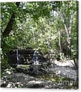 Waterfall Trail Acrylic Print