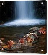 Waterfall And Leaves In Autumn Acrylic Print