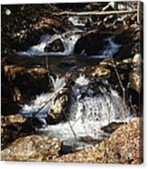 Forever Flowing Acrylic Print