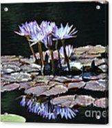 Waterlilies Acrylic Print
