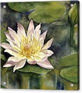 Waterlily Acrylic Print