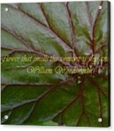 Waterlily Leaf Macro Acrylic Print