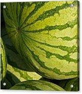 Watermelons Acrylic Print