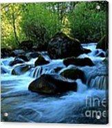 Waters Majestic Acrylic Print by Tim Rice
