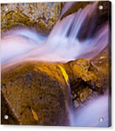 Waters Of Zion Acrylic Print