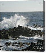 Wave Action Acrylic Print