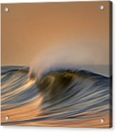 Wave And Bird  Mg_6854dn Acrylic Print