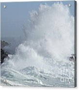 Wave At Salt Point Acrylic Print