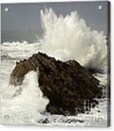 Wave At Shore Acres Acrylic Print