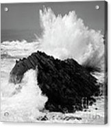Wave At Shore Acres Bw Acrylic Print