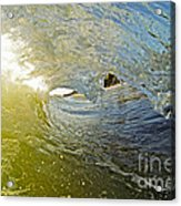 Wave Cave Acrylic Print by Paul Topp