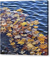 Wave Of Fall Leaves Acrylic Print