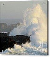 Waves At Salt Point Acrylic Print