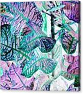 Waves Of Wonder Acrylic Print