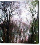 Wavy Willows Acrylic Print