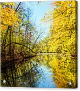 Waxen Autumn 1  Acrylic Print