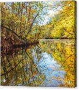 Waxen Autumn 2  Acrylic Print