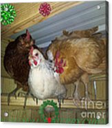 We Wish You A Merry Christmas Acrylic Print