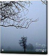 Weather Acrylic Print