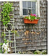 Weathered Maine Seacoast Barn Acrylic Print by Thomas Schoeller