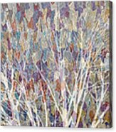 Web Of Branches Acrylic Print
