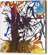 Web Of Life Acrylic Print