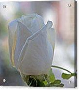 Wedding Flower Acrylic Print