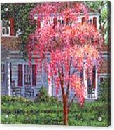 Weeping Cherry By The Veranda Acrylic Print