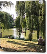 Weeping Willows In Central Park  Acrylic Print