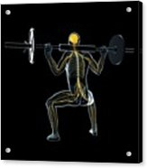 Weightlifter Acrylic Print