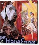Weimaraner Art Canvas Print - Der Blaue Engel Movie Poster Acrylic Print