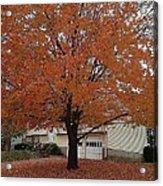 Welcome Fall Acrylic Print