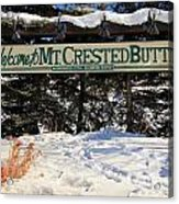 Welcome To Mt Crested Butte Acrylic Print