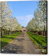 Welcome To The Farm Acrylic Print