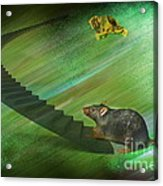 Welcome To The Race...... Acrylic Print