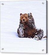 Welcome To Yellowstone Acrylic Print