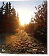 Welcoming Dawn Acrylic Print
