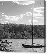 Wellesley College Waban Lake Acrylic Print by University Icons