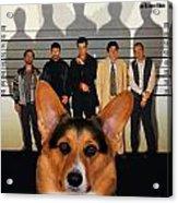 Welsh Corgi Pembroke Art Canvas Print - The Usual Suspects Movie Poster Acrylic Print