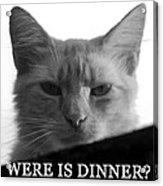 Were Is Dinner Acrylic Print