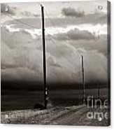 We're Not In Kansas Anymore Acrylic Print