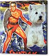 West Highland White Terrier Art Canvas Print - Spartacus Movie Poster Acrylic Print