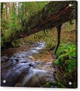 West Humbug Creek Acrylic Print by Everet Regal