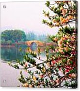 West Lake Blossums Acrylic Print