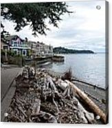 West Seattle Front Yard Acrylic Print