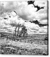 Western Kansas Acrylic Print