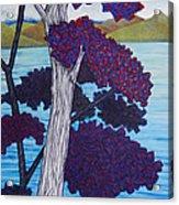 Western Skink On Tree Next To Lake Acrylic Print