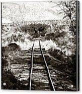 Western Tracks Acrylic Print