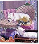 Westies Home Acrylic Print